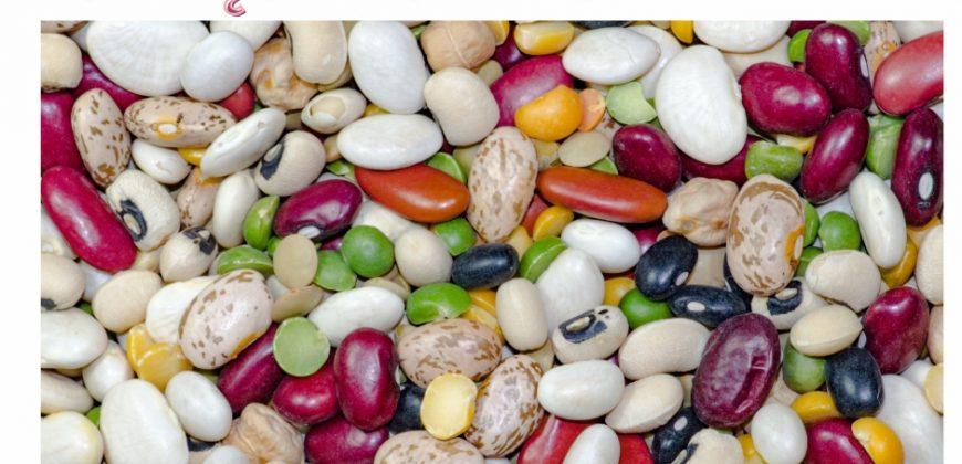 Nasiona roślin strączkowych | Dietetyk kliniczny Natalia Mogiłko